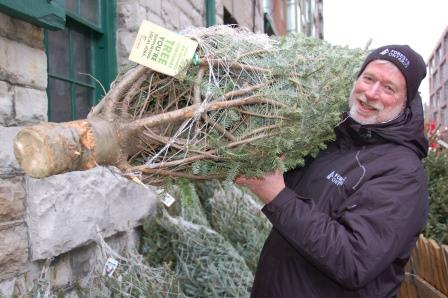 Bring home the real thing! Photo by Forests Ontario